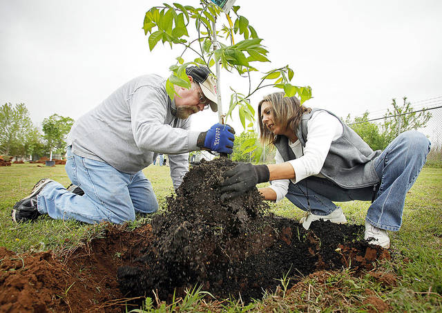 Jerry Newhouse and Christine Hoffman plant a tree Monday as Oklahoma County Social Services starts an apple, pear, cherry and blackberry orchard to benefit low-income seniors. Photos by Steve Sisney, The Oklahoman