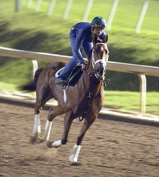 Azeri with rider Yutta C.T. Lang has a workout at Lone Star Park in Grand Prairie, Texas, in 2004. AP File Photo