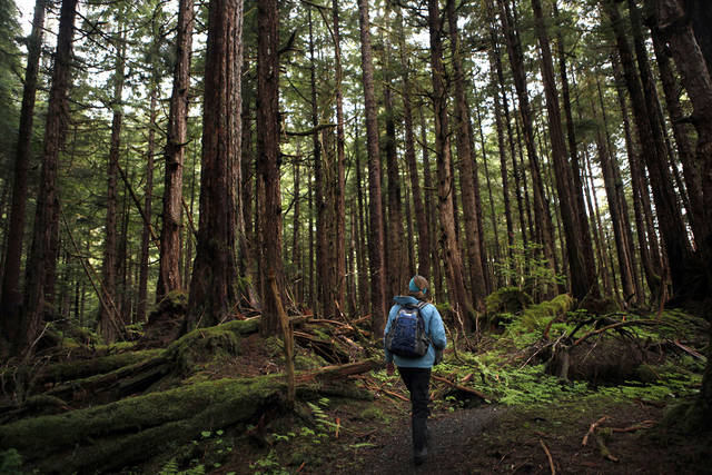 Naturalist Berit Solstad explores the Lake Eva trail in Southeast Alaska, Friday, June 8, 2012.  Photo by Sarah Phipps, The Oklahoman