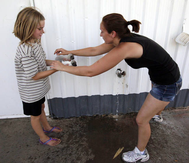 Ruth Hood, right, sprinkles water on 6-week-old Chihuahua puppies to cool them down as they are held by her niece Corrina Dean, 10, at a gas station near SE 108th and Hwy 9 after Hood had to evacuate her home as wildfires burned through Cleveland County near Norman, Okla., Friday, Aug. 3, 2012. The puppies belong to Corrina's sister, Chelsea Dean, however, they were being kept at Hood's home. Photo by Nate Billings, The Oklahoman