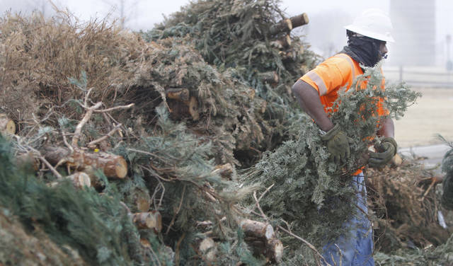 Edmond city worker Tommy Coleman hauls a Christmas tree to the chipper.