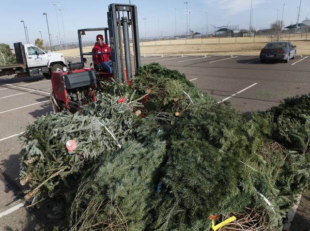 Robert Whalen, with Lowe�s, drops off leftover Christmas trees for recycling Wednesday at Mitch Park.  Photos by David McDaniel, The Oklahoman