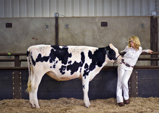 Lacy Minor, of Cheyenne, stands in the show ring as she waits her turn to show during the 2011 Oklahoma State Fair at State Fair Park on Tuesday, Sept. 20, 2011 in Oklahoma City, Okla. Photo by Chris Landsberger, The Oklahoman