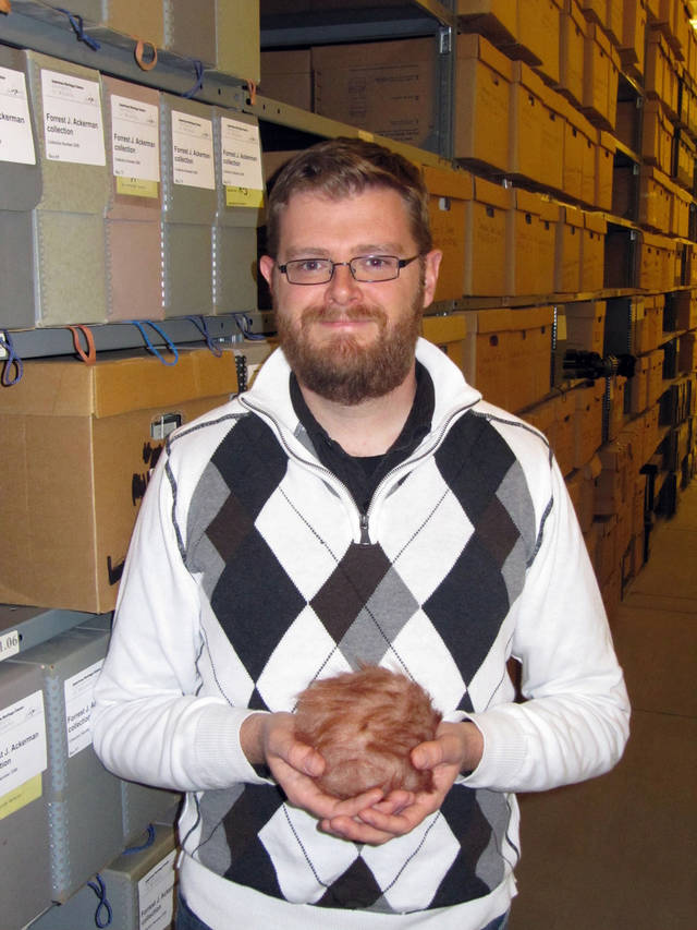 "Keith Reynolds, an archives specialist at the University of Wyoming's American Heritage Center, poses Thursday Oct. 4, 2012, with a tribble from the Star Trek television series in Laramie, Wyo. The headless, legless tribbles first appeared on Star Trek in a 1967 episode. This tribble is part of a collection at the American Heritage Center, which is hosting a ""Name the Tribble"" contest in recognition of American Archives Month. (AP Photo/Mead Gruver)"