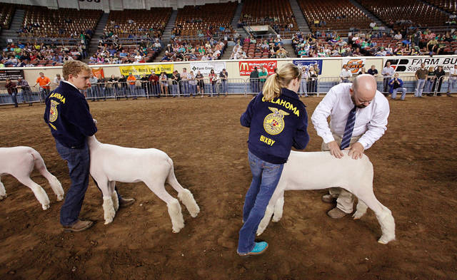 A judge examines sheep during competition at the Oklahoma Youth Expo continues at State  Fair Park,  Thursday, March 17, 2011. Photo by Jim Beckel, The Oklahoman