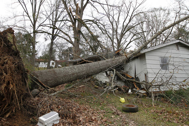 An uprooted tree sits in the home of Dorothy Dixon in Centreville, Miss. on Wednesday, Dec. 26, 2012. No one was home at the time the tree fell on Dixon&#039;s home, except for Dixon&#039;s dogs who were unharmed.  More than 25 people were injured and at least 70 homes were damaged in Mississippi by the severe storms that pushed across the South on Christmas Day, authorities said Wednesday. (AP Photo/The Enterprise-Journal, Philip Hall)