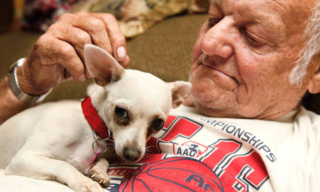 Edwin Fry, 73, and his new dog, a Chihuahua named Whittie, in his Hydro home, Monday night, Nov. 22, 2010, Fry received this dog from a neighbor after his pet poodle, Buddy Tough, was euthanized by local police when Fry was unable to pay the fine to get the dog out of the city's pound after it had been caught in the area without a leash by a town's police officer  Photo by Jim Beckel, The Oklahoman