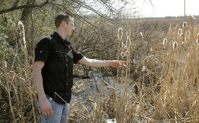 Jonathan Davis looks for cattails at Stinchcomb Wildlife Refuge at Lake Overholser in Oklahoma City, OK, Monday, March 5, 2012. By Paul Hellstern, The Oklahoman