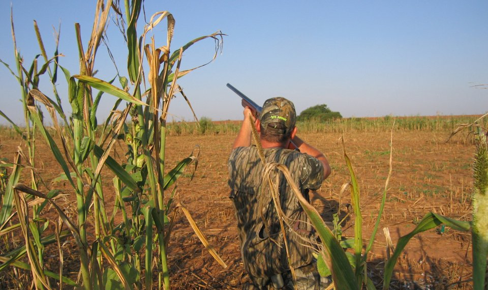 61c266e39b89e More public hunting land will be available to Oklahoma sportsmen and women  for the Sept.