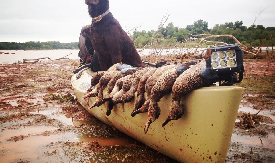 Kayaks Aid In Early Duck Hunt