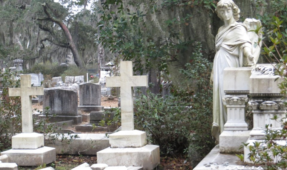 bonaventure cemetery is known for its graceful statuary photo by wesley kh teo for - Midnight In The Garden Of Good And Evil Book