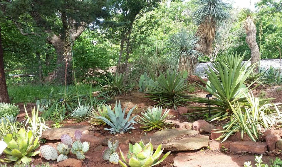 Drought-tolerant garden opens at Oklahoma City Zoo