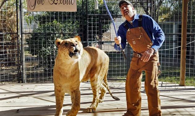 Trailer Investigation Discovery Planning Multiple Specials About Tiger King Stars Joe Exotic And Carole Baskin