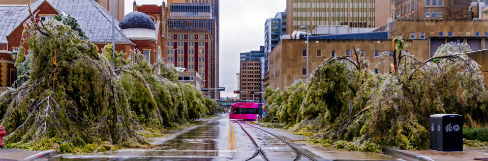 Photo - The streetcar passes by ice covered trees that droop to ground along Robinson Ave. in Oklahoma City, Okla. on Tuesday, Oct. 27, 2020, after a winter blast hit the state.  [Chris Landsberger/The Oklahoman]