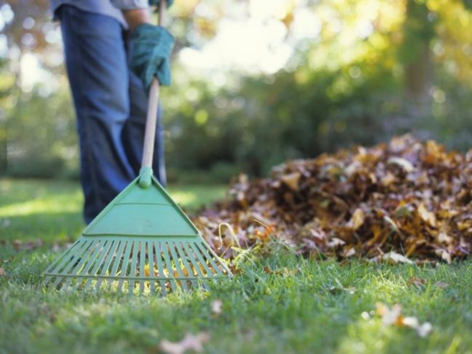 Photo -  As leaves begin to fall, gather and shred or mow them so you can recycle them rather than send them to the landfill. Add to compost, use as mulch or till into garden plots. [Metro Creative Connection]