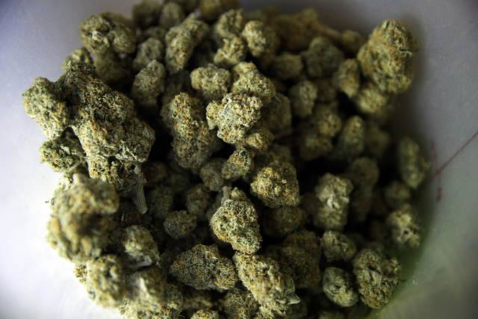 Photo - FILE - This June 27, 2017 file photo shows popcorn shaped marijuana nuggets in a plastic container at the Higher Path medical marijuana dispensary owned by Jerred Kiloh in Los Angeles. When U.S. Attorney General Jeff Sessions green-lighted federal prosecutors to pursue violators of federal marijuana laws, not only states that legalized recreational pot are at risk of a crackdown, but so is most of the rest of America. All but four states allow some form of medical marijuana, even Sessions' home state of Alabama. (AP Photo/Jae C. Hong, File)