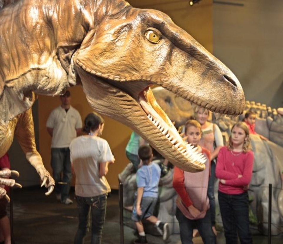 Photo -  Visitors get a look at a Acrocanthosaurus during a 2013 test  tour of the exhibit