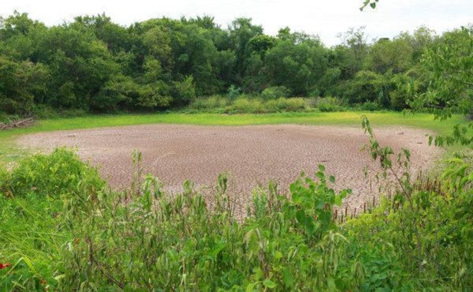 Photo - Dried pond near the corner of Air Depot and 122nd.  David McDaniel - David McDaniel