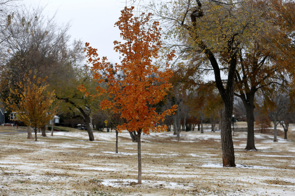 Photo - A dusting of snow is picture in Edgemere Park  in Oklahoma City, Sunday, Nov. 24, 2013. Photo by Sarah Phipps, The Oklahoman