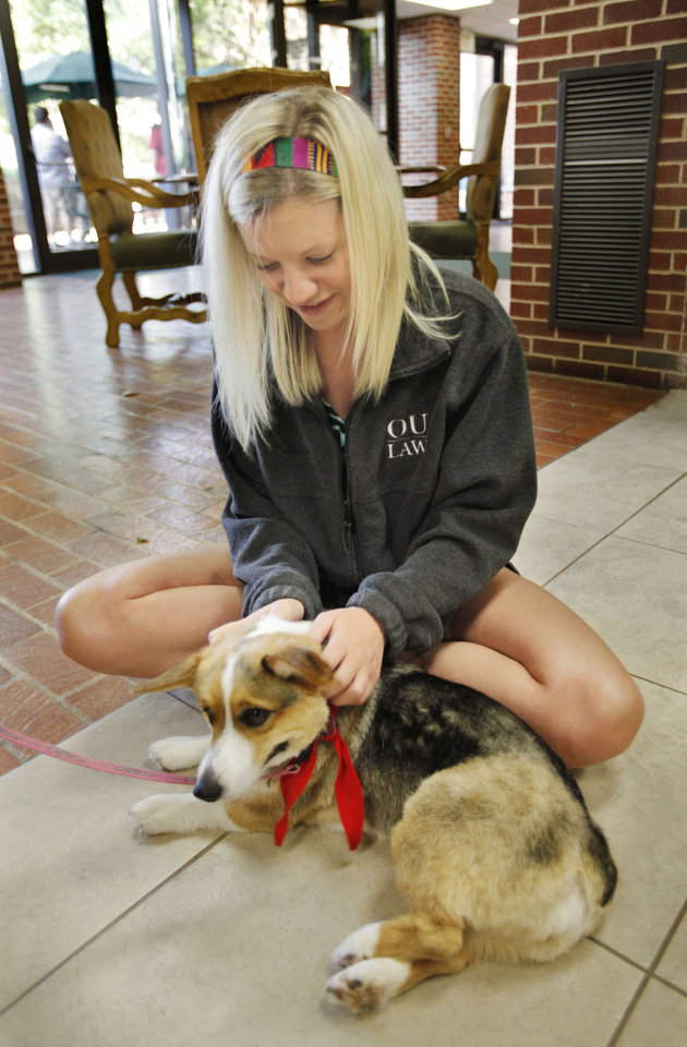Therapy dogs help University of Oklahoma students combat stress of