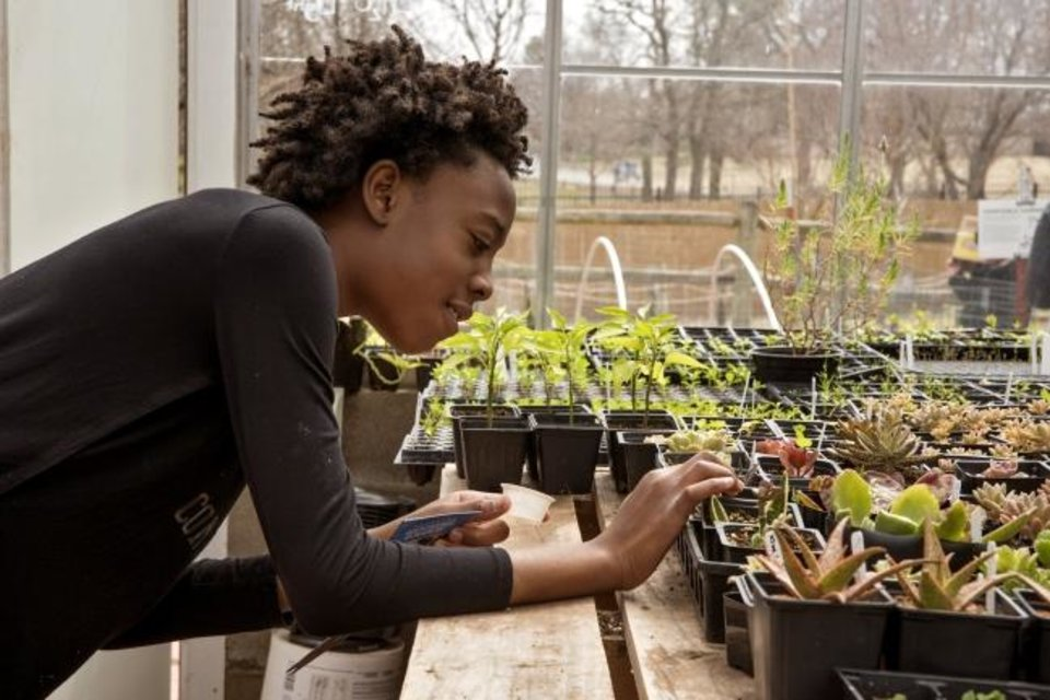Photo -  A Science Museum Oklahoma guest inspects succulents in the museum's hobby greenhouse. [PHOTO PROVIDED]