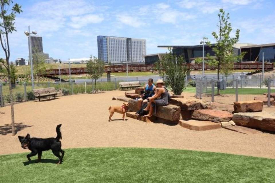 Photo -  Dogs take advantage of the reopening of the dog park at Scissortail Park in downtown Oklahoma City. [Doug Hoke/The Oklahoman]