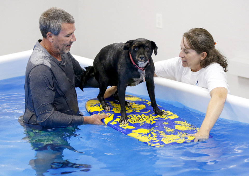 Photo -  Daniel Price and his wife Debbie Price use a boogie board to help Lilly, a 9-year-old schnauzer mix, work on balance and strengthen core muscles in a pool at The Water Bark Canine Aquatic Center at 3800 N Cromwell Avenue in Oklahoma City. The Prices are owners of The Water Bark. [Photos by Nate Billings, The Oklahoman]
