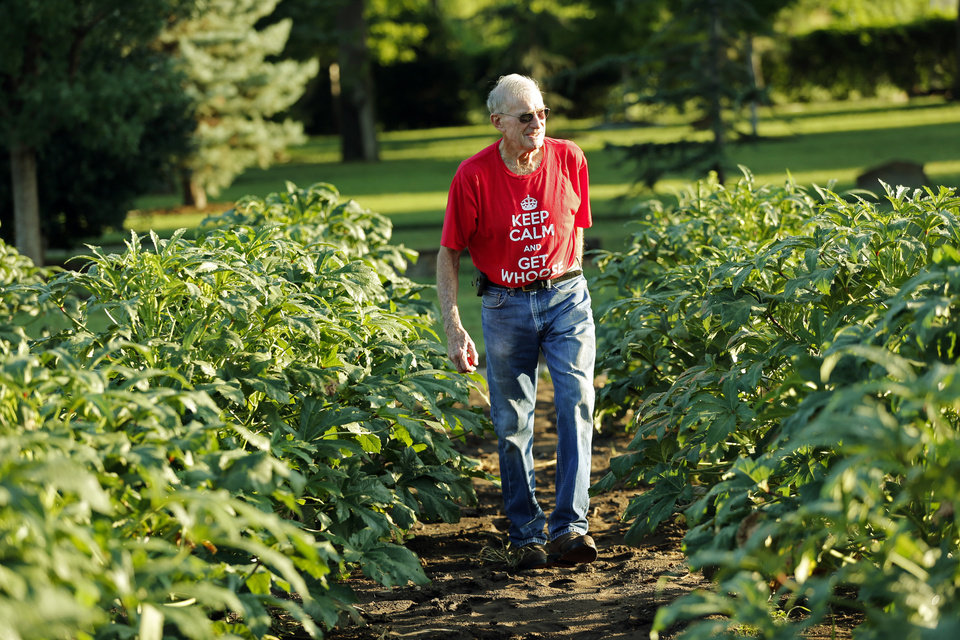 Photo -  Melvin Thompson, coordinator of Del City Church of Christ's extensive community garden, walks in the garden at the church, 1901 Vickie Drive in Del City. [Photo by Steve Sisney, The Oklahoman]