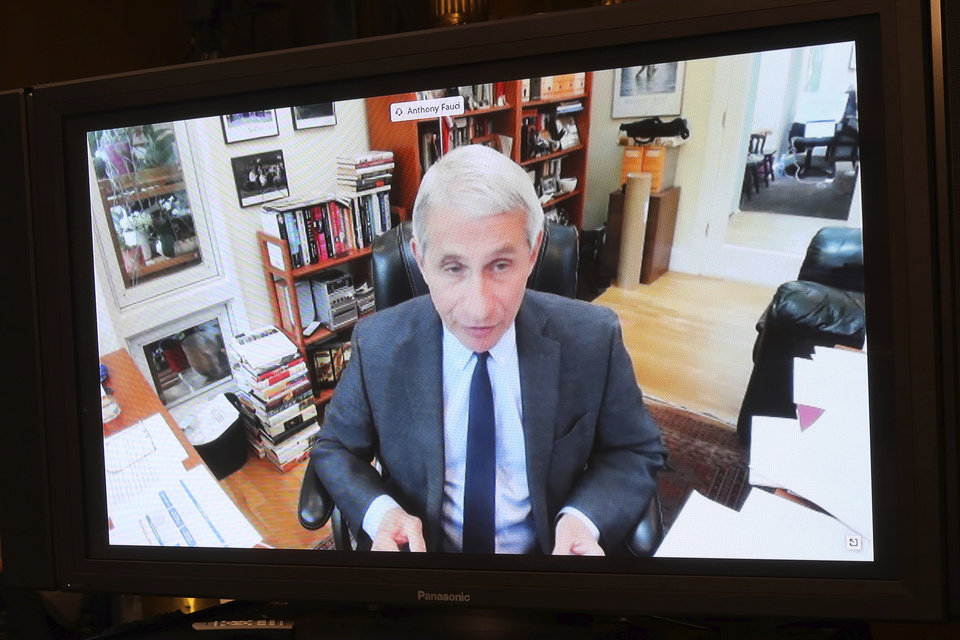 Photo -  Dr. Anthony Fauci, director of the National Institute of Allergy and Infectious Diseases, speaks remotely during a virtual Senate Committee for Health, Education, Labor, and Pensions hearing, Tuesday, on Capitol Hill in Washington. [Win McNamee/Pool via The Associated Press]