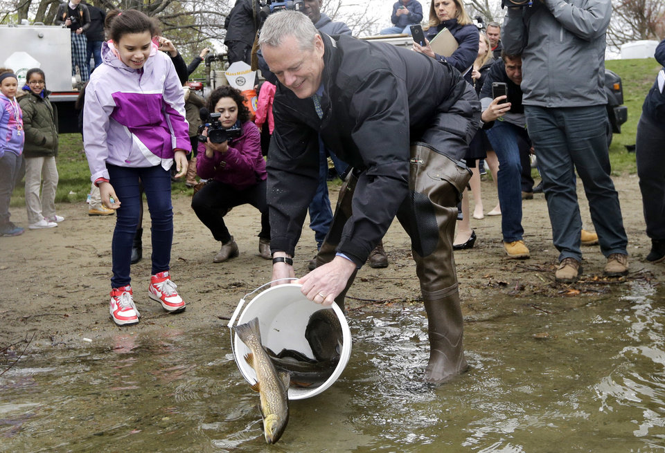 Gov baker helps stock boston pond with trout news ok for Mass fish stocking