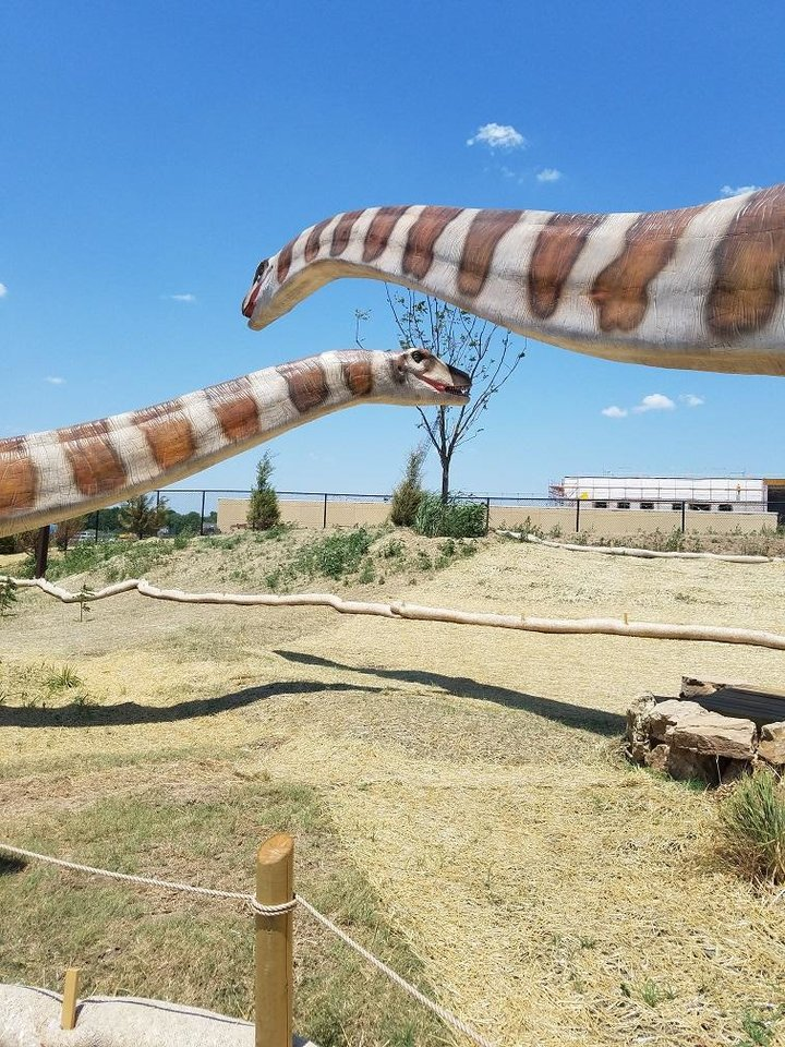 Photo - An Apatosaurus pair is on view at Field Station: Dinosaurs in Derby, Kansas. The new family-friendly attraction just outside Wichita features more than 40 dinosaurs. [Photo provided]