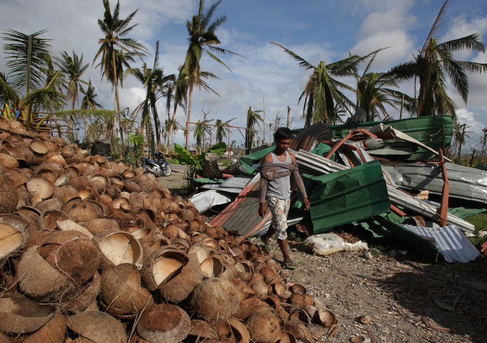 Image result for philippines coconuts typhoons