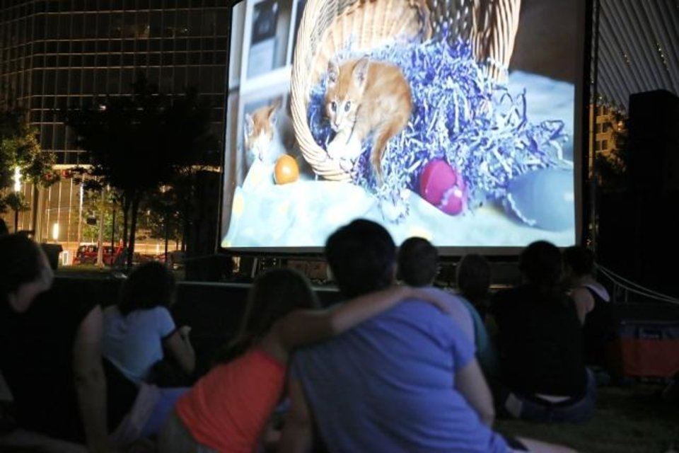 Photo -  People watch a movie during last year's Cat Video Festival at the Myriad Botanical Gardens in Oklahoma City. [Sarah Phipps/The Oklahoman Archives]