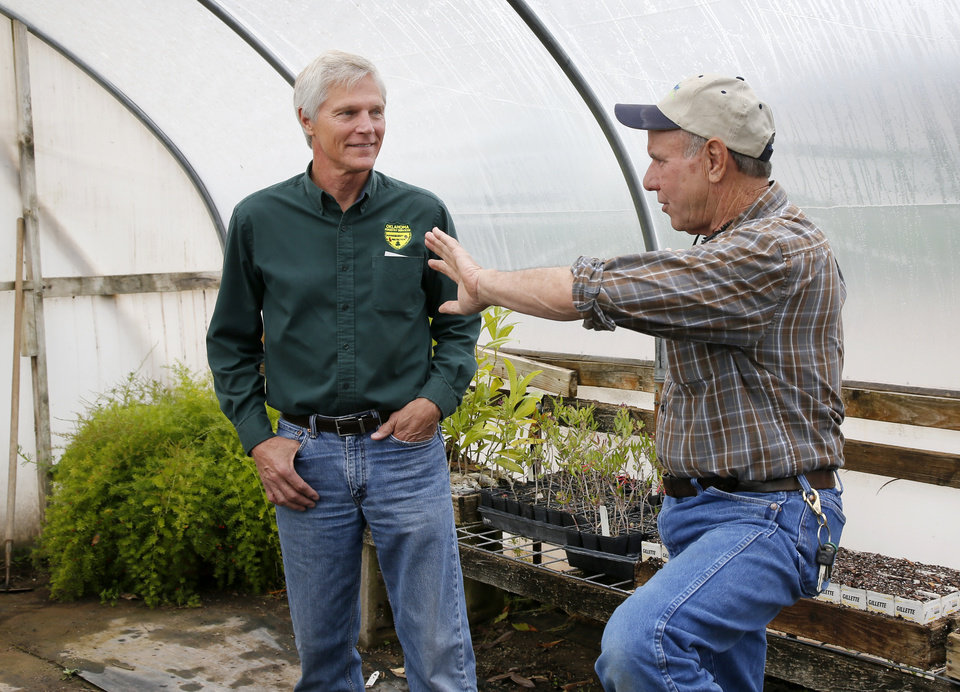 Photo -  Horticulturist Steve Bieberich, right, and Mark Bays, urban forestry coordinator with Oklahoma Forestry Services, talk in a greenhouse at Sunshine Nursery in Clinton. Seedlings grown the nursery from the Survivor Tree's seeds will be distributed at the Oklahoma City National Memorial's remembrance ceremony. [Photo by Nate Billings, The Oklahoman]