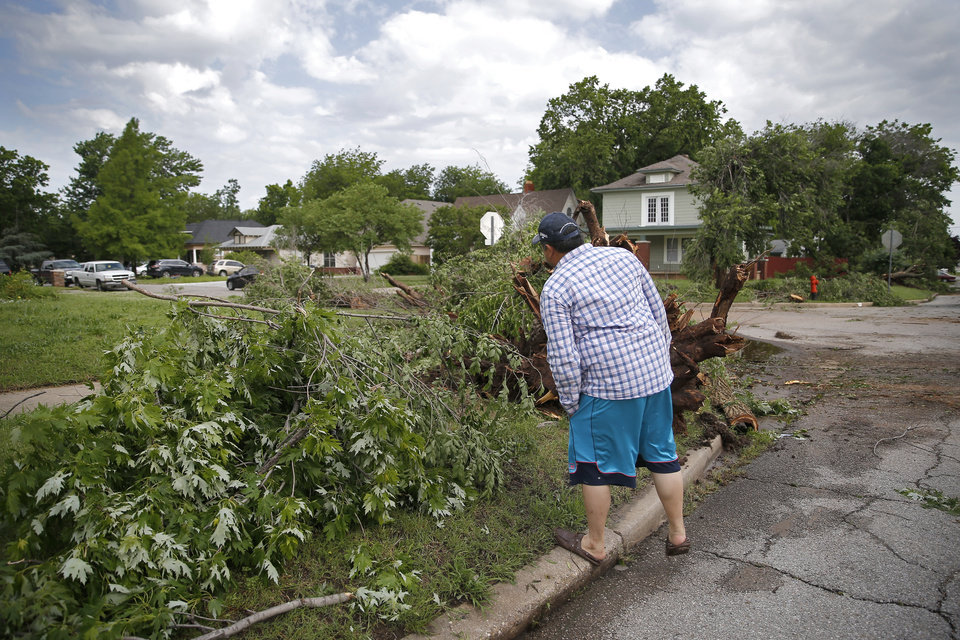 Photo - Juan Luna's looks at tree damage near 21st and McKinley after an apparent tornado moved through the area in Oklahoma City, Sunday, May 26, 2019. Luna said the sirens sounded and it instantly became windy. He stood next to an interior wall with his 12 year old daughter.  [Sarah Phipps/The Oklahoman]
