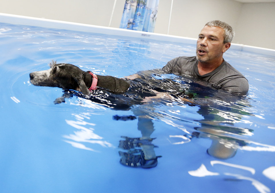 Photo -  Daniel Price works with Lizzie, an 8-year-old husky and cattle dog mix, in a pool at The Water Bark Canine Aquatic Center on Wednesday.