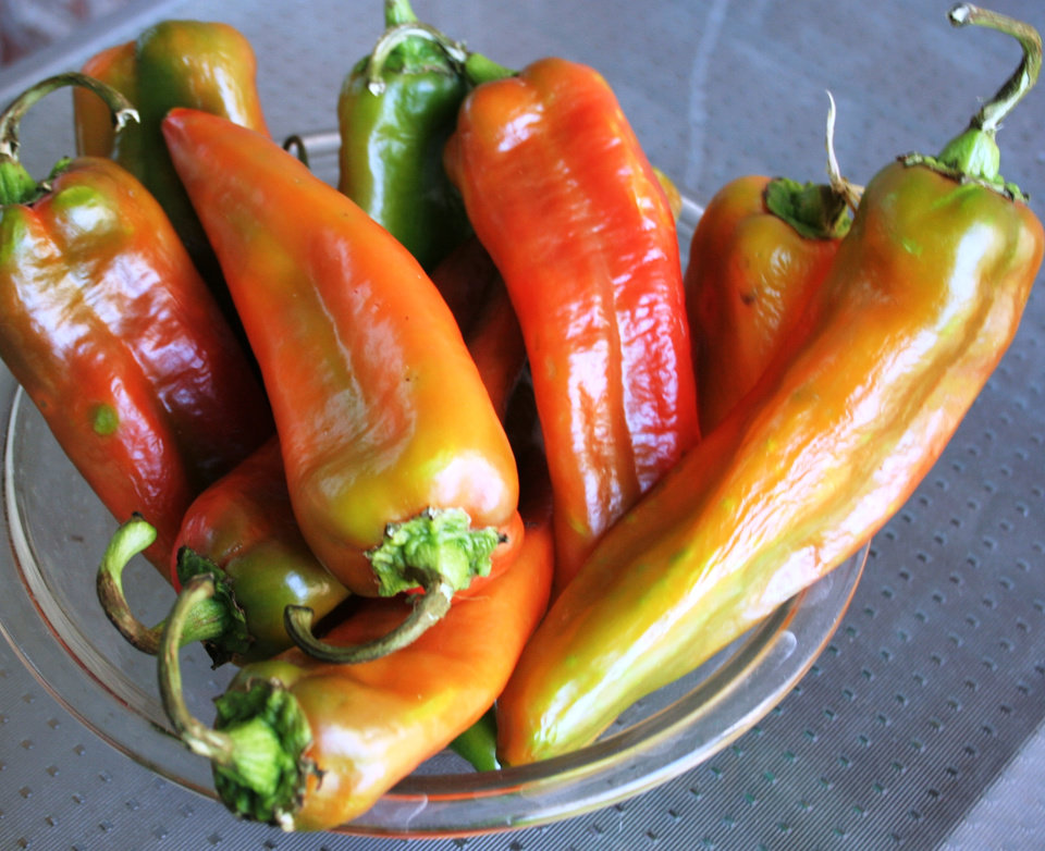 Photo -  Hatch chiles are available at local Homeland stores.