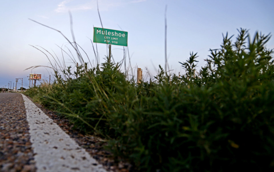 Photo - The Muleshoe, Texas, city limit sign is seen in the hometown of Oklahoma's offensive coordinator Lincoln Riley on Wednesday, June 24, 2015. Photo by Bryan Terry, The Oklahoman