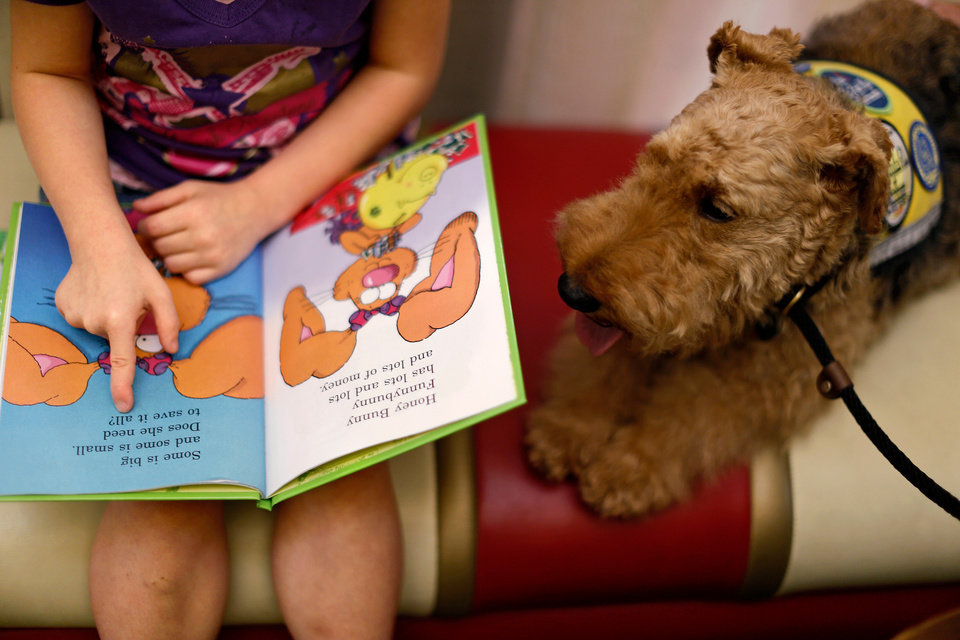Photo -  Charley, a Welsh Terrier therapy dog, sits beside Diana Cunningham, 5, as she reads aloud at the Village Library on Wednesday, July 10, 2013. Charley and his owner Jerry Nickell have been visiting The Village Library for 4 years to participate in the Reading to Dogs program which lets children practice reading aloud. Photo by Bryan Terry, The Oklahoman