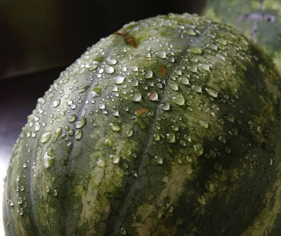 Photo - Watermelon. Photo by Jim Beckel, The Oklahoman