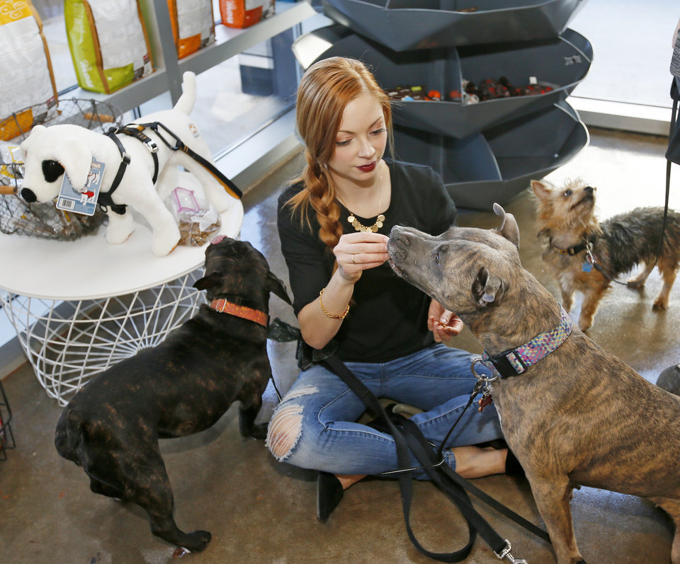 Dogs spur business ventures in oklahoma citys deep deuce news ok photo amanda st john the deep deuce dog walker gives a treat solutioingenieria Image collections