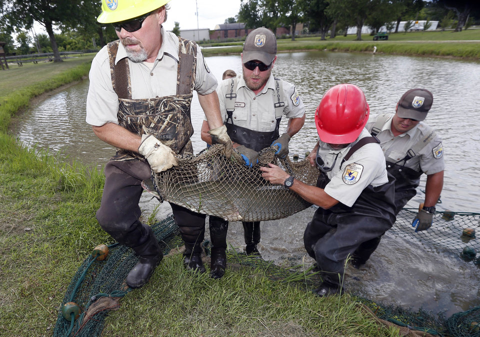 Huge Oncehated Fish Now Seen As Weapon Against Asian Carp News OK - Asian carp map 2016 non us