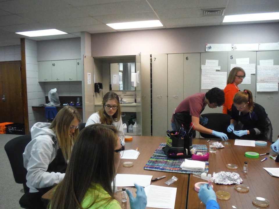 Photo - BioMedical Sciences 2 students at NWTC Alva work on culturing bacteria.  Pictured (l to r) include:   Chesney Fouts, Kally Gordon, Nicole Ritter, Gage Bouziden, Braylyn Graybill and Devyn Goddard all Alva High School seniors. (Photo by Jennifer Shaw)