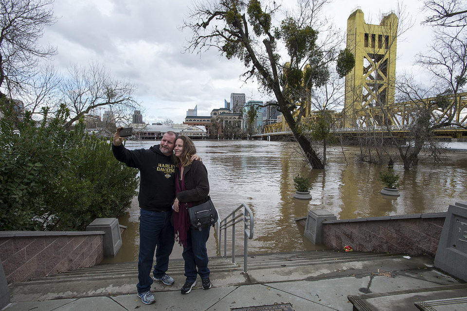 Weakened by drought trees are falling in rainy California