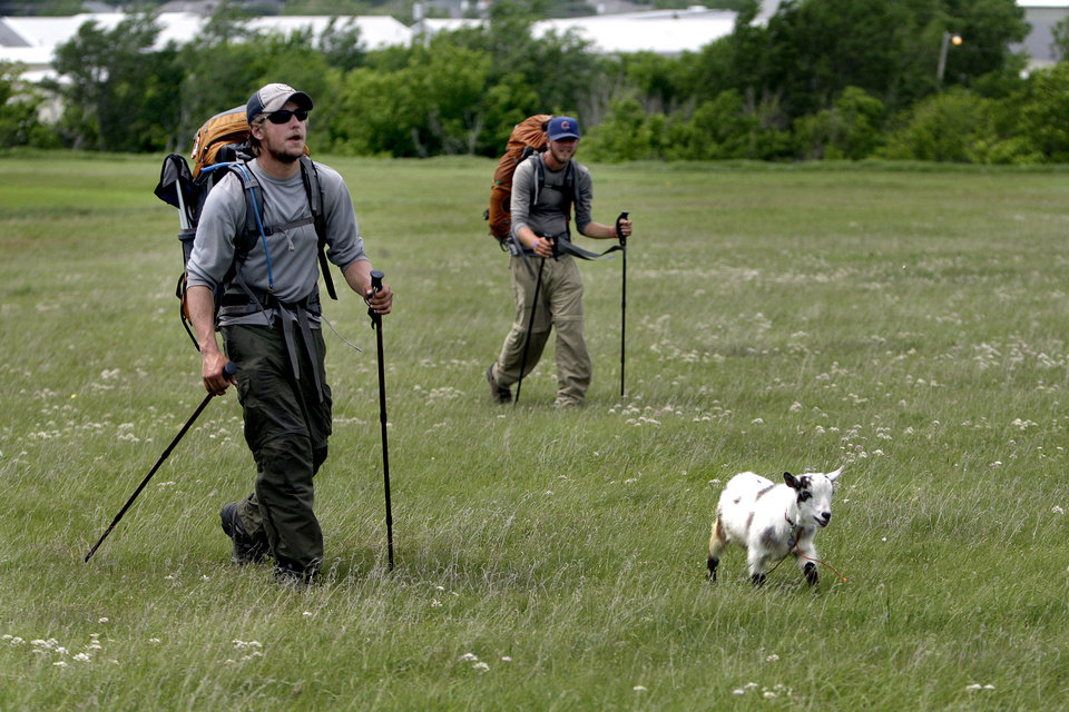 Photo - Phillip Aldrich, left, and Kyle Townsend  walk with Wrigley the goat walk in a field along Wilshire Boulevard in Oklahoma City, Thursday, April 19, 2012. The groups is walking with a a goat  to