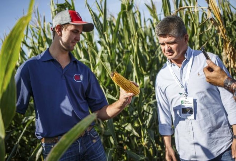 Photo -  Wes Seifert, of RTS Family Farms, shows an ear of corn pulled from their fields to Enrique Jiminez, an international buyer from Mexico, during the Illinois Dept. of Agriculture's Illinois Grain Tour stop at RTS Family Farms in Auburn, Ill. [AP PHOTO]