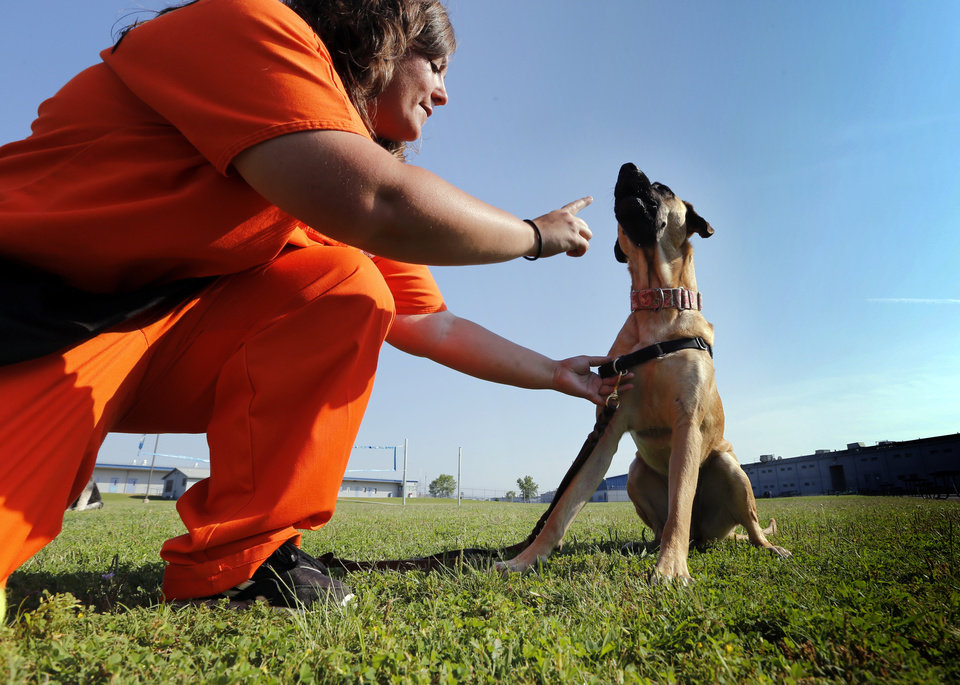 Photo -  Kimberly Wenthold shows the skills of her dog in training, Annie, at the dog training facility at Mabel Basset Correctional Center in McLoud. [Photo by Steve Sisney, The Oklahoman]