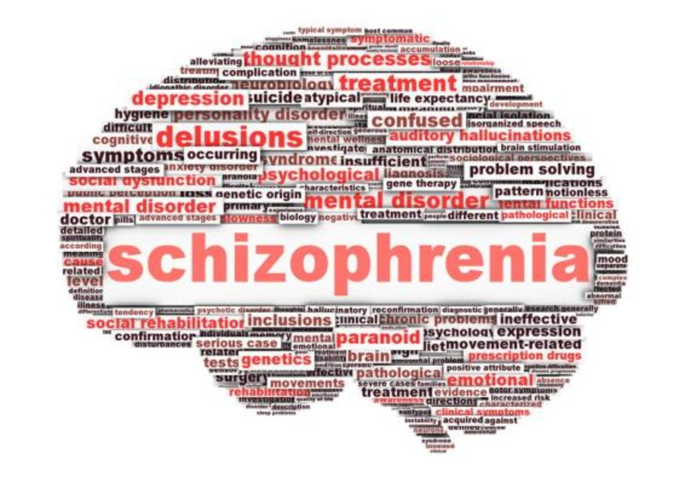 Schizophrenia: Myths and Facts|White Swan Foundation