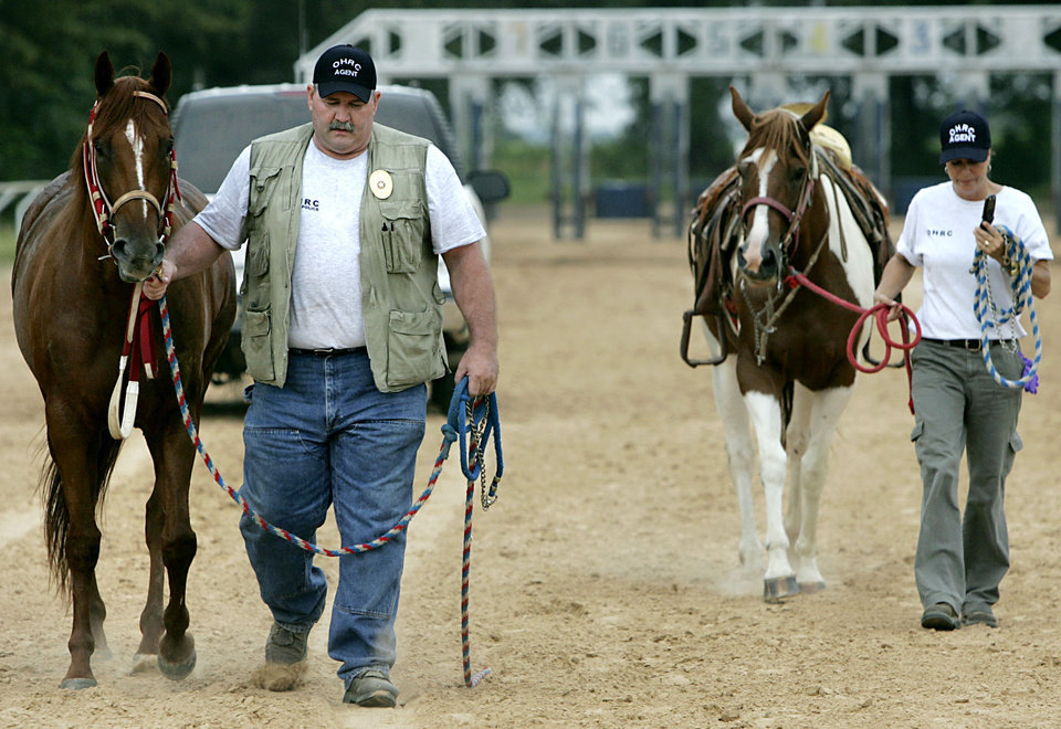 Photo - Officials with the Oklahoma Horse racing Commission lead away horses during a raid on a suspected illegal horse racing operation near Thackerville, OK., on Sunday, July 29, 2007. By John Clanton, The Oklahoman