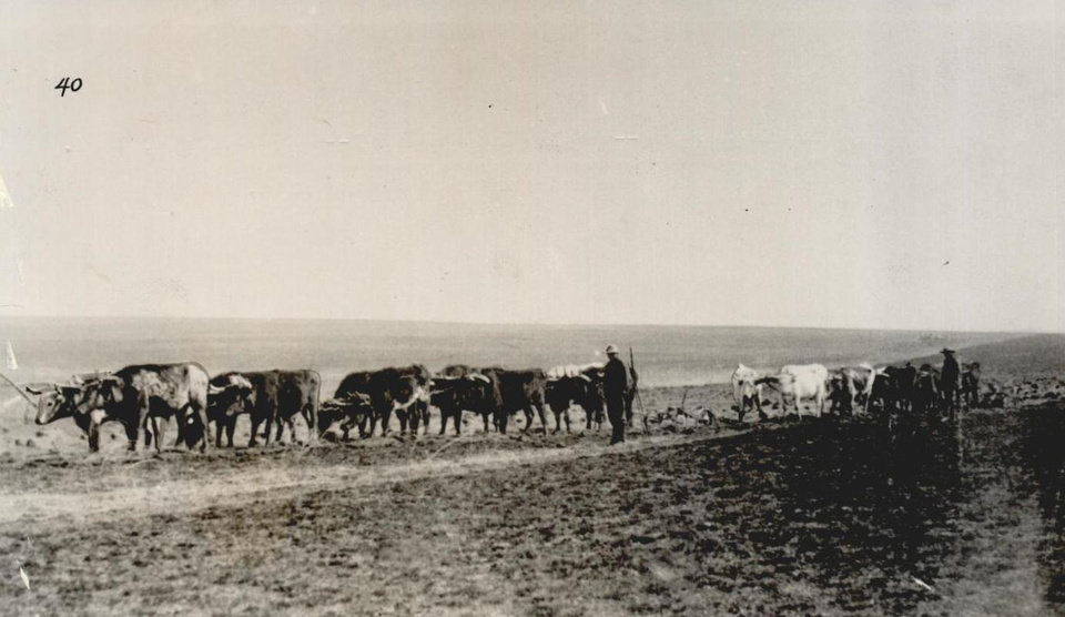 Photo -  Pioneers break ground near Guthrie in 1889. [The Oklahoman Archives]